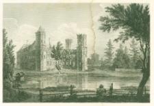 Zamek w Wyszynie