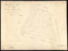 Regierungsbezirk Posen, Kreis Schrimm, Gemarkung Prusinowo Gut. Aus der im Jahre 1823 durch Kuhn [...] im Jahre 1827 [...] durch Ziehlke [...] copirt und rectifizirt durch [...] Kapler, angefertigt [...] 1865 durch [...] Neuman.