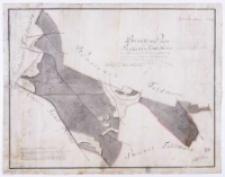Brouillon Plan von dem Radzewer Forst - Revier [...] im 1801 [...] durch Hahn.