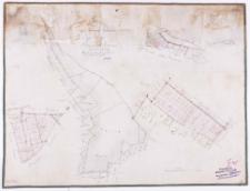 Plan von den Abfindungs Ländereien für einige Wirthe von Borowcer-Hauland Kreises Schrimm [...]. Aus den [...] Charten [...] von Ziehlke.