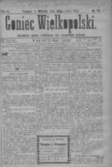 Goniec Wielkopolski: najtańsze pismo codzienne dla wszystkich stanów 1879.07.29 R.3 Nr171