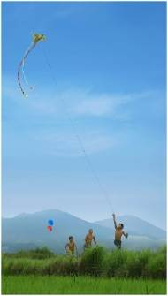 Kite childhood