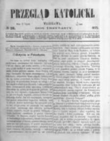 Przegląd Katolicki. 1875.07.15 R.13 nr28