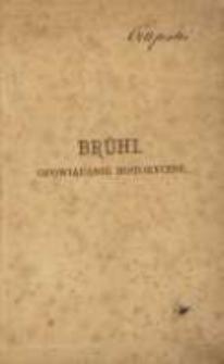 Brühl: opowiadanie historyczne przez J. I. Kraszewskiego. T. 2