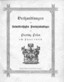 Verhandlungen des fünfunddressigsten Provinziallandtages der Provinz Posen im Juni 1902