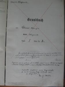 Placówka wychowawcza w Antoniewie. Grudbuch Glinno Band (Tom) I Blatt (Karta 3)