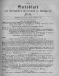Amtsblatt der Königlichen Preussischen Regierung zu Bromberg. 1878.09.20 No.38