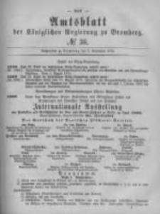 Amtsblatt der Königlichen Preussischen Regierung zu Bromberg. 1879.09.05 No.36