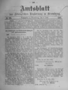 Amtsblatt der Königlichen Preussischen Regierung zu Bromberg. 1904.06.09 No.23