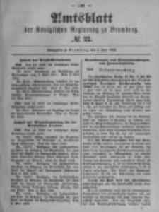 Amtsblatt der Königlichen Preussischen Regierung zu Bromberg. 1899.06.01 No.22