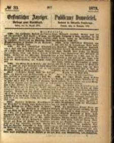 Oeffentlicher Anzeiger. 1873.08.14 Nro.33