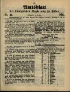 Amtsblatt der Königlichen Regierung zu Posen. 1895.06.04 Nro.23