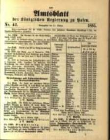 Amtsblatt der Königlichen Regierung zu Posen. 1895.10.15 Nro.42