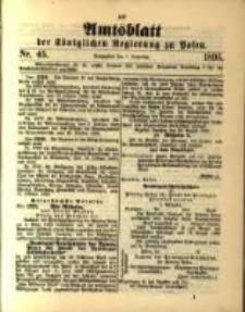 Amtsblatt der Königlichen Regierung zu Posen. 1895.11.05 Nro.45