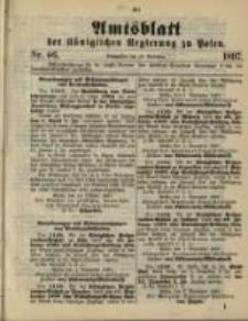 Amtsblatt der Königlichen Regierung zu Posen. 1897.11.16 Nro.46