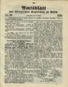 Amtsblatt der Königlichen Regierung zu Posen. 1898.08.16 Nro.33