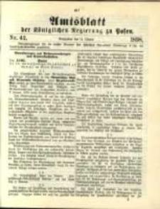 Amtsblatt der Königlichen Regierung zu Posen. 1898.10.18 Nro.42