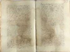 Uwolnienie od kary Marcina ab Alexwangen, sekretarza kancelarii królewskiej, za zabicie w obronie własnej Bartłomieja Fürstenberga, ok. 1553