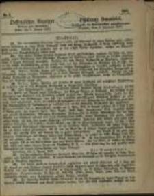 Oeffentlicher Anzeiger. 1867.01.08 Nro.2