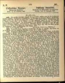 Oeffentlicher Anzeiger. 1867.11.12 Nro.46