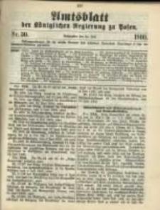Amtsblatt der Königlichen Regierung zu Posen. 1900.07.24 Nro.30