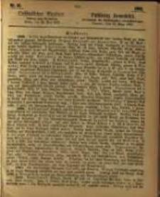 Oeffentlicher Anzeiger. 1863.05.12 Nro.19