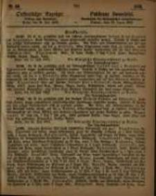 Oeffentlicher Anzeiger. 1863.07.28 Nro.30