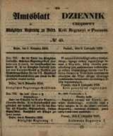 Amtsblatt der Königlichen Regierung zu Posen. 1858.11.09 Nro.45