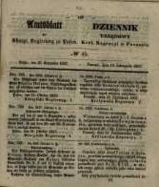 Amtsblatt der Königlichen Regierung zu Posen. 1857.11.10 Nro.45