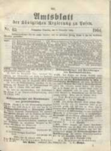 Amtsblatt der Königlichen Regierung zu Posen.1904.11.08 Nr.45
