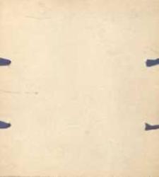 Kurjer Lijoński. Dramat w 5-ciu aktach (ośmiu obrazach) [...] przełożył z francuskiego M. K.