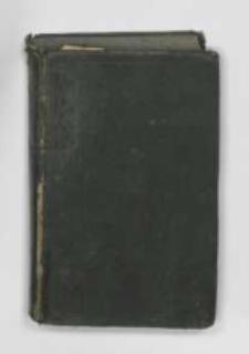 Album Muzeum Narodowego w Rapperswyllu : rok 1876 pod red. J.I. Kraszewskiego