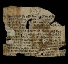Iudicium astrologicum ad a. 1528