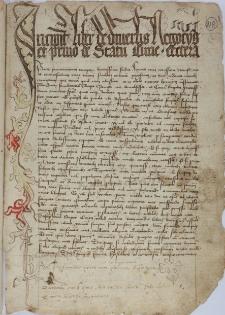 Formularz z kopiami dokumentów dotyczących spraw polskich z lat 1253-1427