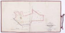 Plan von dem Vorwerke Dworzysko Kreis Schrimm Vermessen 1830 und angefertigt 1841 durch Ziehlke, copirt 1873 durch Lüerdsen.