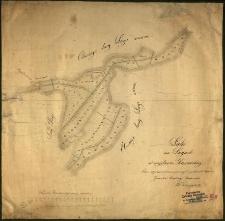 Łąki na ługach w majętności kurnickiej celem wydzierżawienia pomierzył i podzielił 1870-go r. [...] Biederman.