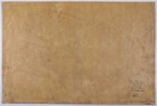 Kopja z mapy katastralnej obrębu Prowent Bnin [...] Przekopiował z mapy katastralnej T. Szczebliński [...]. Mapa 1