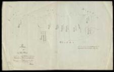 Plan von der Wiese Otruce welche von einigen Wirthen des Radzewoer Haulandes vom Dominii gekauft worden. Kopirt nach der von Ziehlke angefertigten Karte [...] 1864 durch [...] Kresser.