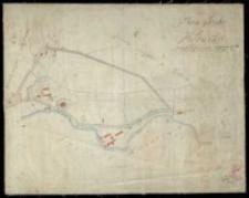 Plan parku w Kórniku. Rozmierzył Ziehlke, uzupełnił i przekopiował w r. 1842 jeometra rządowy Biederman, rekopiował r. 1879 A. Kausz.