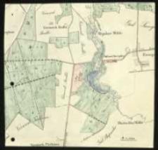 [Wycinek z nieokreślonej mapy obejmujący mapę lasów ośrodka smoguleckiego].