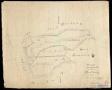 Mappa rozparcelowanych łąk w obrębie Bielawy. Pomierzył i wyrysował w czerwcu 1879 A. Kausz.