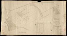 Karte von den Grundstücken der Eigenthümer zu Biernatki, Kreis Schrim. Copirt 1839 durch Koch.