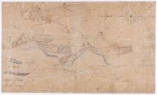 Plan du chatêau du comte Dzialinski auprès de Kurnik et de ses environs fait et dessine par Ziehlke.