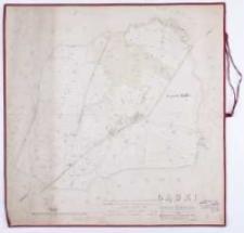 Gądki Kreis Schrimm 1868. Rectificirt und copirt nach der d. Sieg 1809 entwarfenen, d. Treter 1833 copirten und d. Eck 1850 recopirten Karte durch Luedsen.