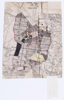 [Wycinek mapy katastralnej obejmujący lasy Zwoli ręcznie kolorowany.]