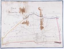 Charte von Kromolice Schrimmer-Kreisses vermessen im Jahre 1819 durch Schulz. Eingetheilt im Jahre 25 durch Kuhn copirt im Febr[uar] 27 durch Ziehlke [...].