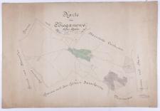 Karte von Bieganowo, Kreis Schroda. Gemessen im Herbst 1826, durch Goetsch [...]. Copirt im Sommer 1858 durch Crusius