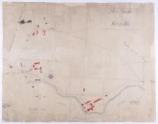 Plan parku w Kórniku. Rozmierzył Ziehlke i Biederman, uzupełnił i przerysował w roku 1898 Pudelewicz.