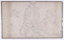 Karte von der Feldmark Borowiec Hauland jetzt Waldau. Copirt nach den [...] Ziehlke [...] aufgenommenen [...] durch Keil und Kochanowski.