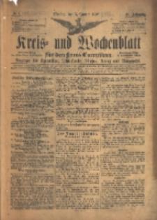 Kreis- und Wochenblatt für den Kreis Czarnikau: Anzeiger für Czarnikau, Schönlanke, Filehne, Kreuz, und Umgegend. 1897.01.05 Jg.45 Nr1